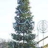 У центрі Борисполя засяяла Новорічна ялинка